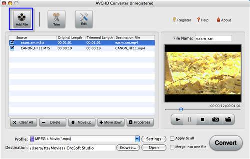 AVCHD to iDVD Converter
