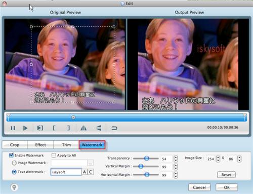 Mac DVD to Walkman Converter